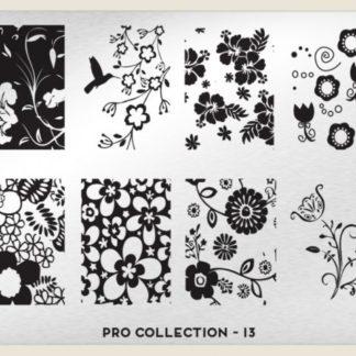 Пластина для стемпинга MoYou London (Pro XL Collection-13)