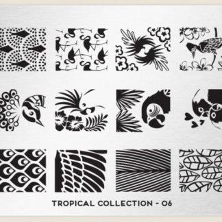 Пластина для стемпинга MoYou London (Tropical Collection-06)